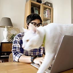 Femme présentant un projet sur son ordinateur