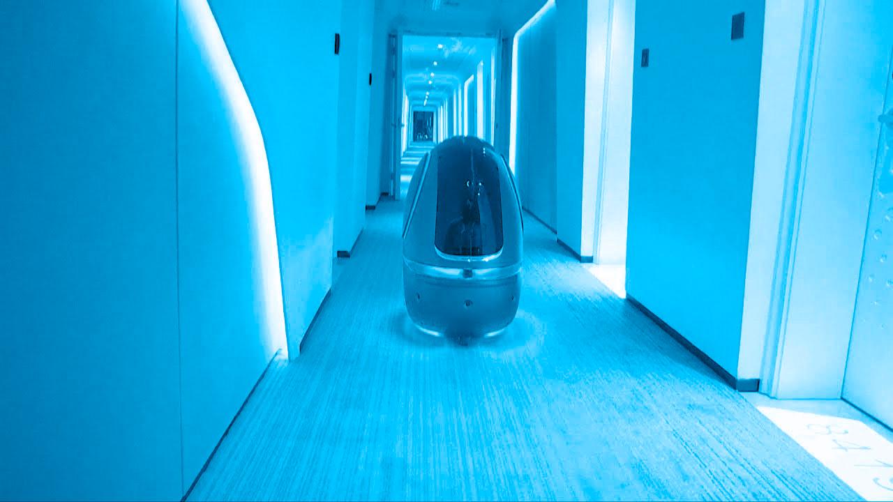 Un jour, on passera de meilleures vacances grâce aux robots.