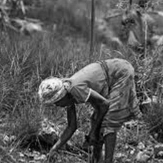 une femme ramassant des déchets