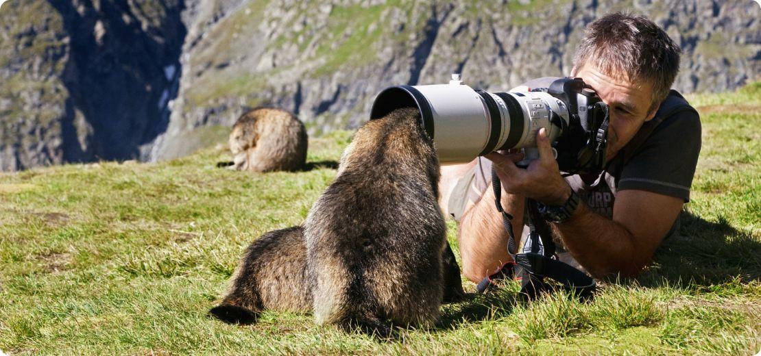 Photographe en train de prendre une photo avec une marmotte qui pose sa tête dans l'objectif